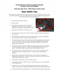 bearfacts_safetytips